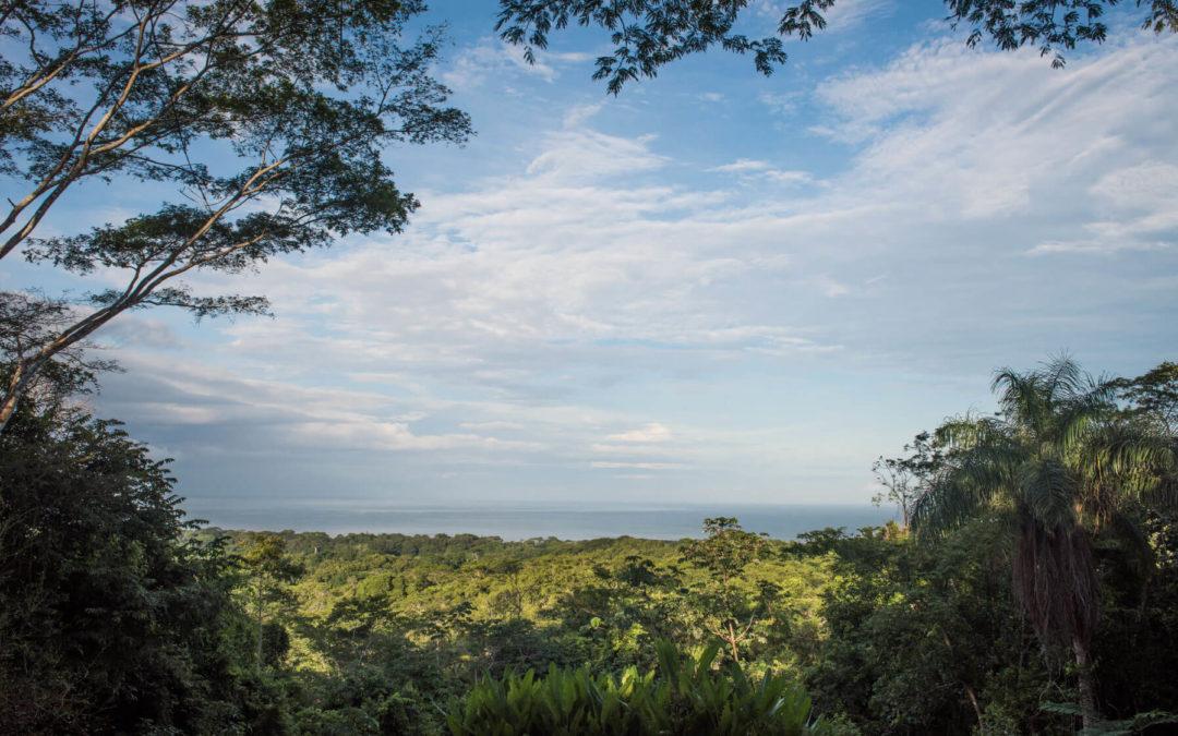 CARTA RECIBIDA DE LA JUNTA DIRECTIVA DE LAS VISTAS – LETTER RECEIVED FROM THE BOARD OF LAS VISTAS